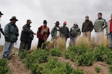 """Proyecto: """"Gestión del riesgo agrícola integral y apoyo al fortalecimiento de medios de vida de los productores en situación de vulnerabilidad productiva"""""""
