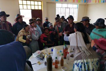 Investigación participativa sobre la efectividad de los biofoliares en el altiplano boliviano